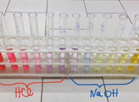 Il concetto di pH